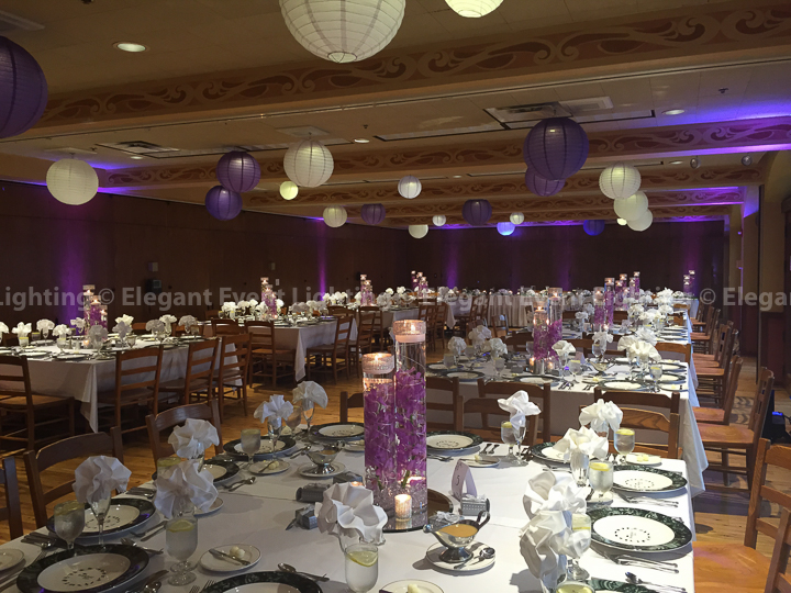 Illuminated Paper Lanterns & Uplighting | Elegant Event Lighting