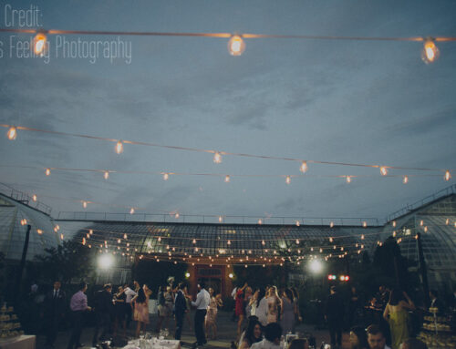 Cafe Globe Lighting in Your Wedding!
